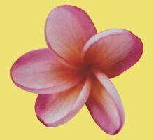 Pink Frangipani Baby Tee
