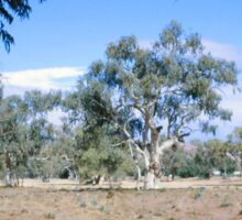Todd River, Alice Springs, Australia (1966) Sticker