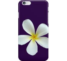 Frangipani - White and Yellow iPhone Case/Skin