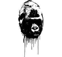 Kong Photographic Print