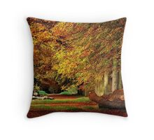 When life was full of colour Throw Pillow