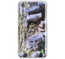 Redwood Forest Mushrooms iPhone Case/Skin