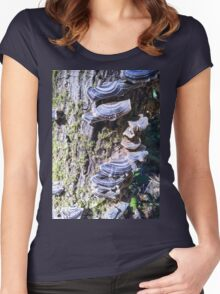 Redwood Forest Mushrooms Women's Fitted Scoop T-Shirt