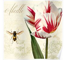 Natural History Sketchbook I Botanical study bumble bee, tulip Poster