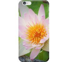 Pink Lotus Flower Photo iPhone Case/Skin