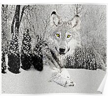 WOLF AND SNOW Poster