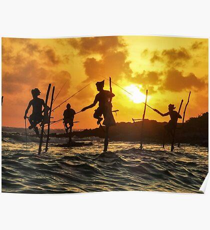 Stilt Fishermen in Sri Lanka Poster