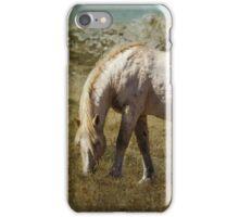 Cloud - Pryor Mustang iPhone Case/Skin