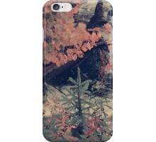 Beaver Dam iPhone Case/Skin