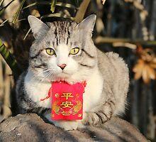 Lucky cat by NYANKICHILABO
