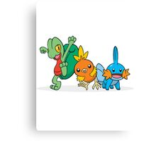Pokémon Generation 3 Starters Canvas Print