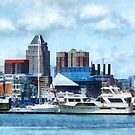 Baltimore Skyline and Harbor by Susan Savad
