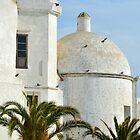 Moorish Spain by Alexandra Lavizzari