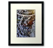 An Icy Creek Framed Print
