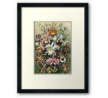 flower artwork Framed Print