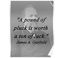 Garfield - Pound Of Pluck Poster
