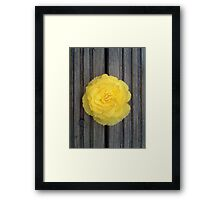 Yellow on the Deck Framed Print