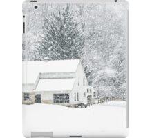 Wintry Homestead  iPad Case/Skin