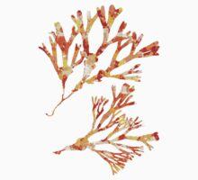 Ocean Seaweed Kids Tee