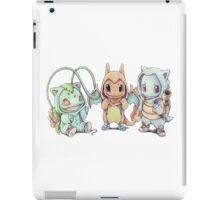 Choose one, if you can iPad Case/Skin