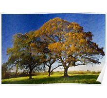 Autumn Trees Poster