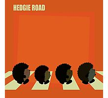 Hedgie road Photographic Print