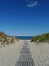Pathway to the sea by Madeleine Forsberg