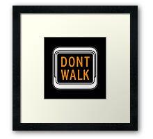 Don't Walk, Traffic Light, USA Framed Print