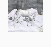 Frost .. the Winter Unicorn Womens Fitted T-Shirt