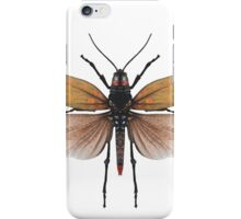 Winged Grasshopper Drawing iPhone Case/Skin