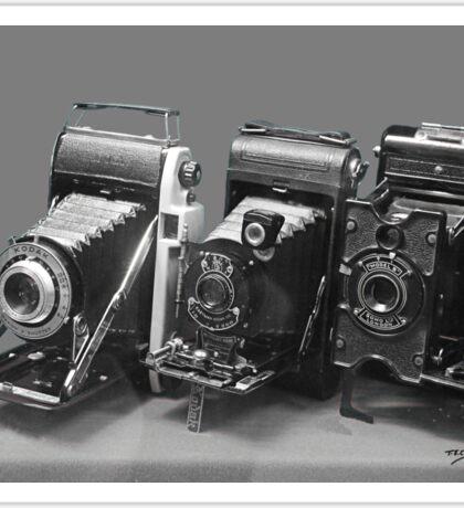 Vintage cameras photography design Sticker