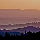 Dusky Tuscany by phil decocco