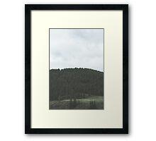 Simplistic Green Forest Framed Print
