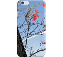 Red Berries and Contrail iPhone Case/Skin