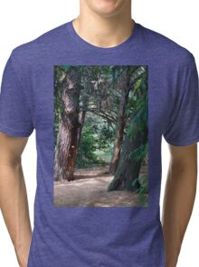 tree in the forest Tri-blend T-Shirt