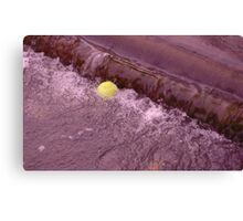 Trapped on the Weir Canvas Print