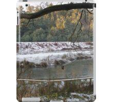 Frozen Pool and Railway Embankment iPad Case/Skin