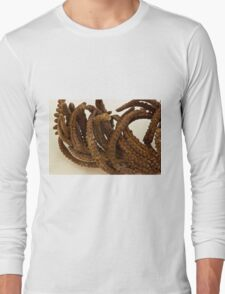 Cinnamon Fern Seeds - Macro  Long Sleeve T-Shirt