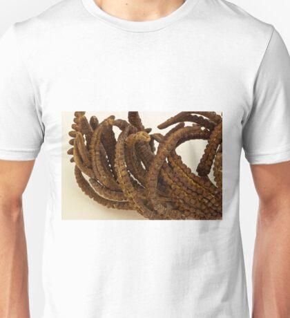 Cinnamon Fern Seeds - Macro  Unisex T-Shirt