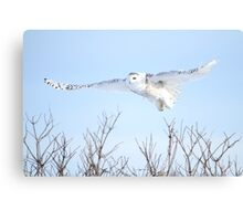 The goddess of gliding Canvas Print