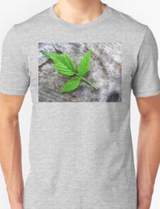 Wild Rose Leaf . T-Shirt