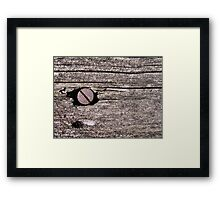The Screw Framed Print