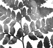 leaf fern black and white Sticker