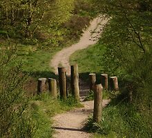 Posts On Path by Adrian Wale