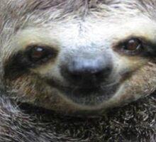 Smiling Sloth Sticker