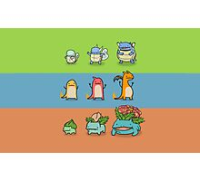 Pokemon Starters Photographic Print
