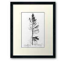 aspen solitude silhouette design Framed Print