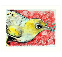 silvereye  Art Print