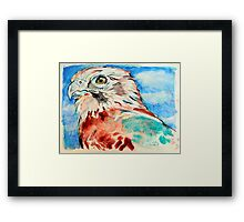 Brown Falcon Framed Print