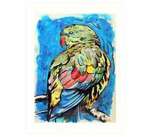 Regent Parrot Art Print